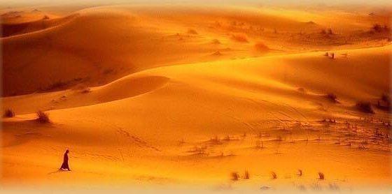 gavenios dykuma